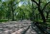 Central Park :: Central Park